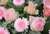 14734995-gerberas-roses-pales-et-roses-dans-l-39-arrangement-floral-mixte